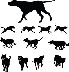 Dogs various vector image