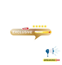 exclusive news icon for journalism of news tv vector image
