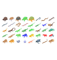 Reptiles and amphibians icons set isometric style vector