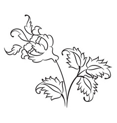 iznik style rose drawing vector image vector image