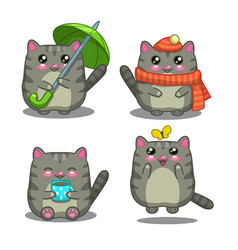 Gray cat vector image vector image