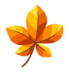 autumn chestnut leaf vector image