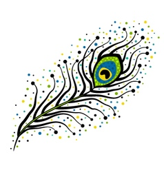 Black peacock feather with dots vector