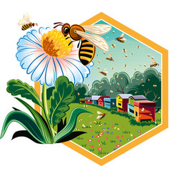 Hexagon frame with worker bees on flowers vector