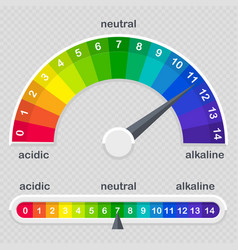 ph value scale meter for acid and alkaline vector image