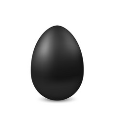 Realistic black egg isolated vector