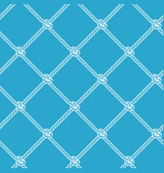 rope net vector image