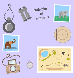 Set for safari on a gray background vector