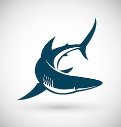 Shark sign rotate vector image