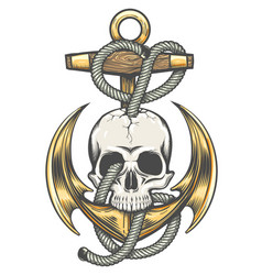 Skull and anchor colorful tattoo vector