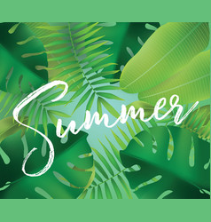 summer background for posters and banners vector image