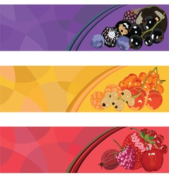 Three banners with berries of different colors vector