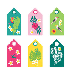 tropical set of summer tags vector image