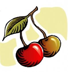two berries vector image