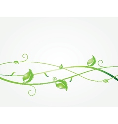 Green leaves and butterflies Ecological vector image vector image