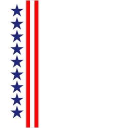 american ribbon frame vector image