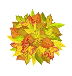 Autumn Leaves Concept in Flat Design vector image