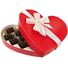 chocolates vector image vector image