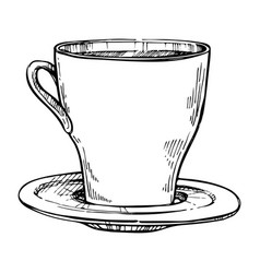 coffee cup freehand pencil drawing vector image