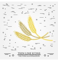 Ears of grain thin line design Ears of grain pen I vector image