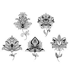 Elegant persian paisley floral elements vector