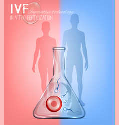in vitro fertilization image vector image