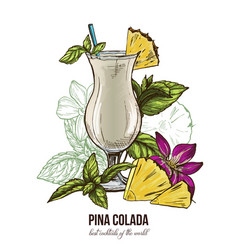 Pina colada cocktail mint leaves and flower vector
