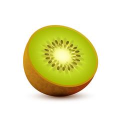 realistic icon kiwi sliced juicy vector image