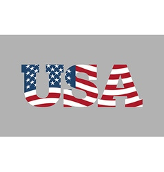 USA flag in text American flag in letters National vector