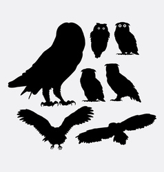 Owl bird silhouettes vector image vector image