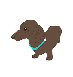 a cartoon dachshund that stands vector image