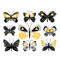 butterflies color set vector image