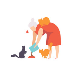 Elderly woman feeding her cats adorable pets vector