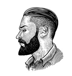 hand drawn portrait bearded man in profile vector image
