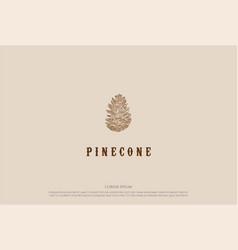 rustic hand drawn pine cone logo design vector image