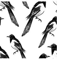 seamless background magpie sketches vector image
