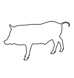 wild boar outline of the black lines vector image