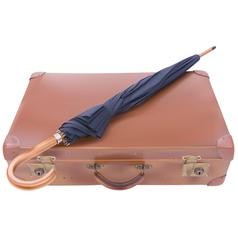 Suitcase and Umbrella vector image vector image