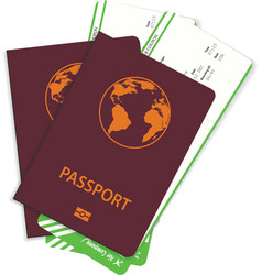airline passenger tickets or boarding pass vector image