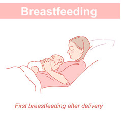 breastfeeding mother and new bain bed vector image