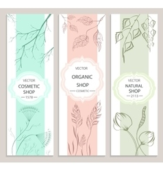 Decorative floral botanical banner vector