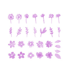 decorative flower watercolor design elements vector image