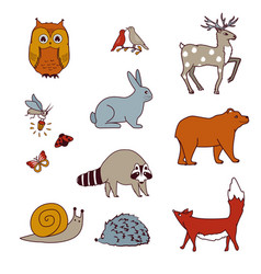 forest animals set with bear owl birds deer hare vector image