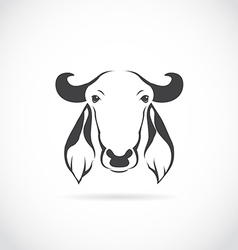 image of cow head vector image