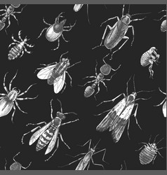 pest control seamless pattern vector image