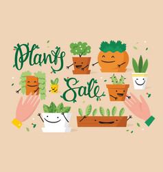 plants sale special offer vector image