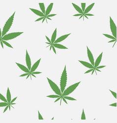 seamless pattern leaves marijuana vector image