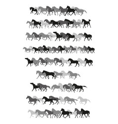 set horses silhouettes in black and grey vector image