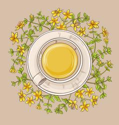 cup of tutsan tea vector image