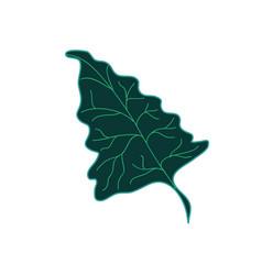 deltoid tropical leaf hand drawn vector image vector image